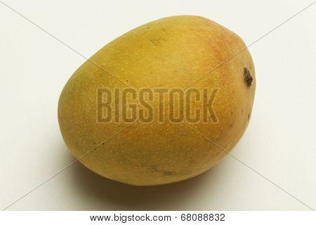 Alphonso mango from Maharashtra India.