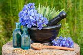 picture of hyssop  - Mortar with blue cornflowers and sage vials with essential oil - JPG