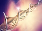 picture of biotech  - Abstract medical background with DNA strands - JPG