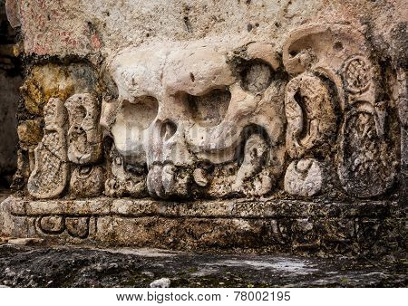 Mayan carvings skull