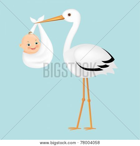 Poster Stork With Baby With Gradient Mesh, Vector Illustration