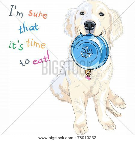 Vector Sketch Whte Puppy Dog Breed Labrador Retriever Sitting