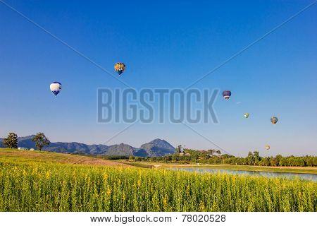 Hot Air Balloon Over Yellow Flower