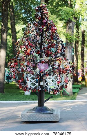 Tree With Wedding Locks