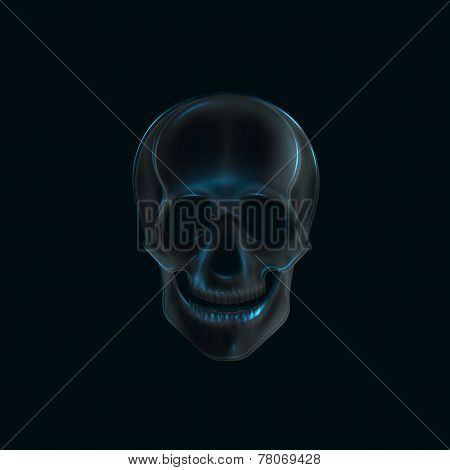 vector illustration of a human  skull x-ray print. medical concept
