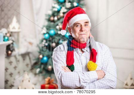 Portrait of mature man in Santa's hat