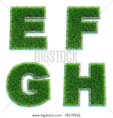 Letters E, F, G, H as Lawn - Set of 3d.