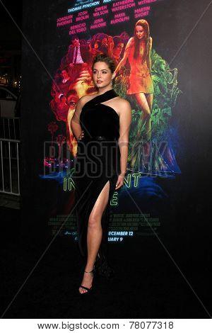 LOS ANGELES - DEC 10:  Sasha Pieterse at the