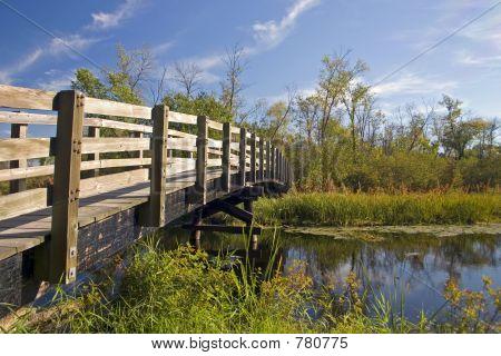 Nature Trail Foot Bridge