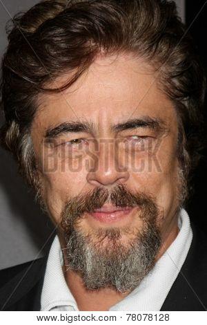 LOS ANGELES - DEC 10:  Benecio Del Toro at the