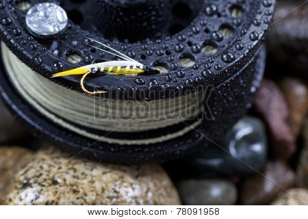 Single Trout Fishing Fly On Reel