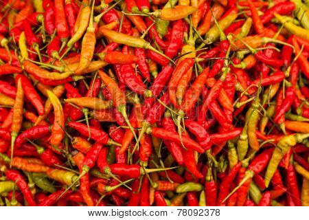 Hot Red Chili Or Red Chili Pepper For Sale At The Asian Market.