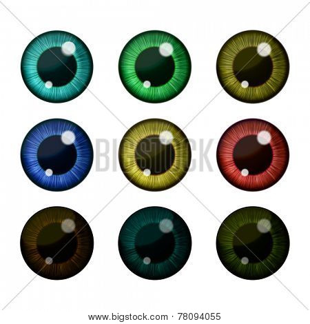 Vector eyes collection. Vector human pupil