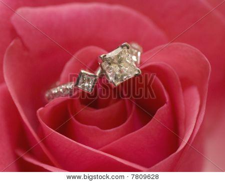 beautiful engagement wedding ring on rose