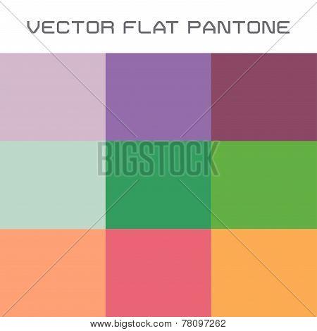 Flat Pantone Color Swatch