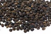 Black Pepper Close Up