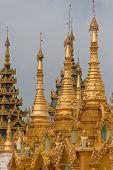 picture of yangon  - The Shwedagon Pagoda in Yangon - JPG