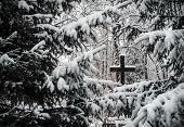 Постер, плакат: Cemetery in winter