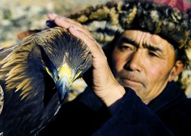 picture of mongolian  - Mongolian man with traditional lifestyles - JPG