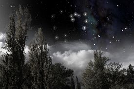 pic of sagittarius  - The constellation of Sagittarius above the clouds and the trees lit by moonlight - JPG