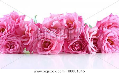 Bouquet of beautiful fresh roses isolated on white