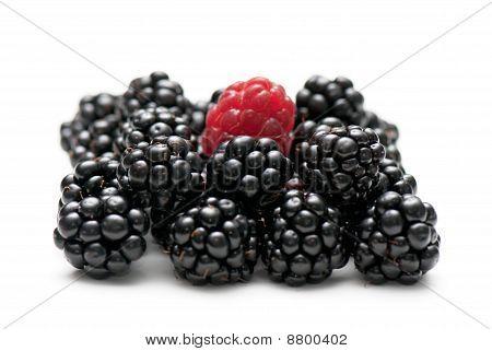 Blackberry And Raspberry