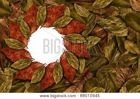 Vintage Leaves Background With Round Frame