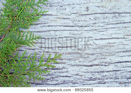 Old White Wooden Background, Photo Texture