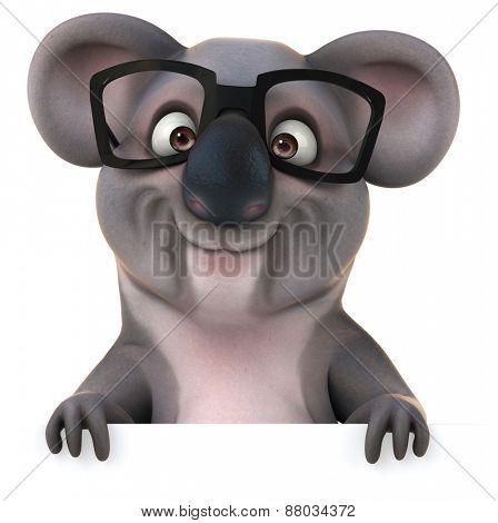 Fun koala