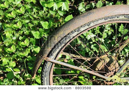Rusty wheel of broken down bike