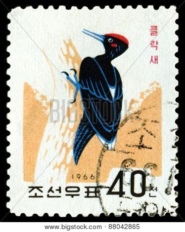 Vintage  Postage Stamp. Bird  Black Woodpecker.