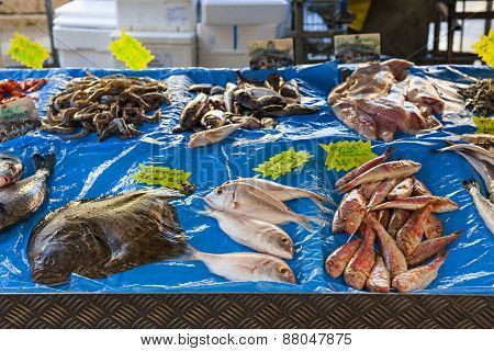 Fresh fish for sale on outdoor market in old Nice, France.