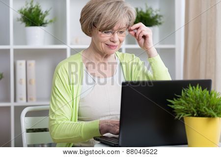 Woman Chatting On The Internet