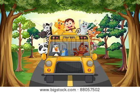Animals riding on a zoo bus