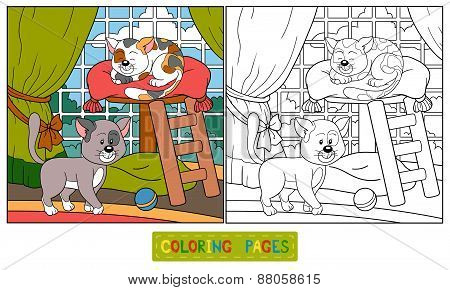 Coloring Book (cats)