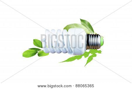 Fluorescent Bulb As A Symbol Of Environmental Conservation