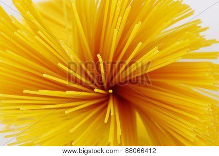 detail of spaghetti bundle on white background