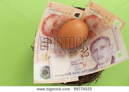 Singaporean Dollars in a Nest