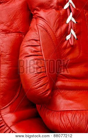 Close up of boxing glove