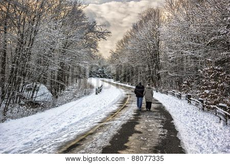 Into the winter