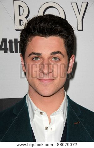 LOS ANGELES - FEB 14:  David Henrie at the