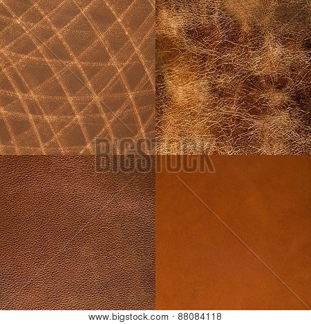 Set Of Brown Leather Samples