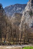 picture of serbia  - Rock Formation in Erma River Gorge - JPG