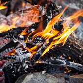 foto of bonfire  - Bonfire in the spring forest - JPG