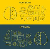 picture of left brain  - left and right brain functions concept for web and print - JPG
