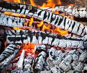 stock photo of bonfire  - Bonfire in the spring forest - JPG