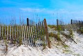 pic of gulf mexico  - worn weathered beach fence in white sand dunes - JPG