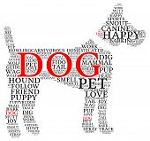 stock photo of dog tracks  - Dog shaped dog word cloud on a white background - JPG