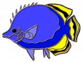 picture of dory  - A 3D graphic of a tropical fish with a yellow and black tail - JPG