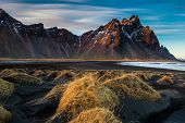 stock photo of lavender plant  - Sunset on the mountains and volcanic lava sand dunes by the sea in Stokksness - JPG